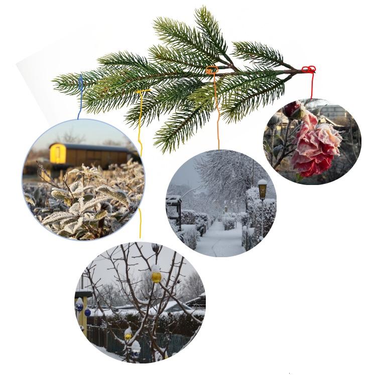 Eine besinnliche Weihnachtszeit und einen guten Start in das neue Jahr